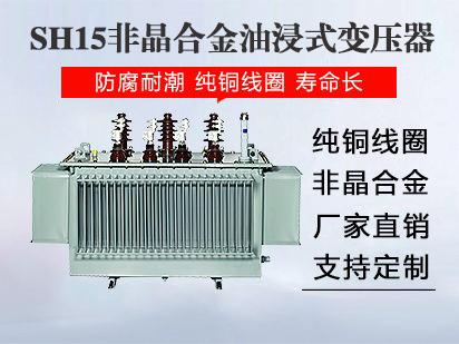 <b>SH15非晶合金油变</b>